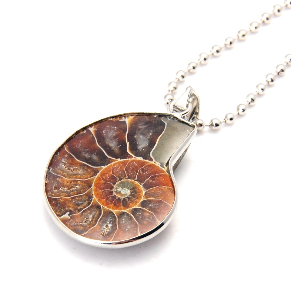 Silver Plated Ammonite Pendant
